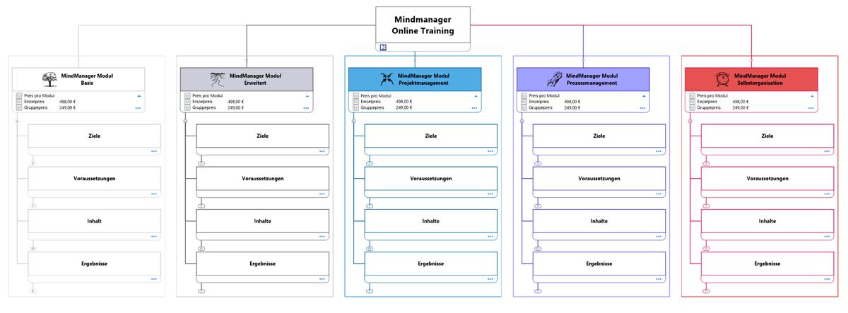 5 Module MindManager Training