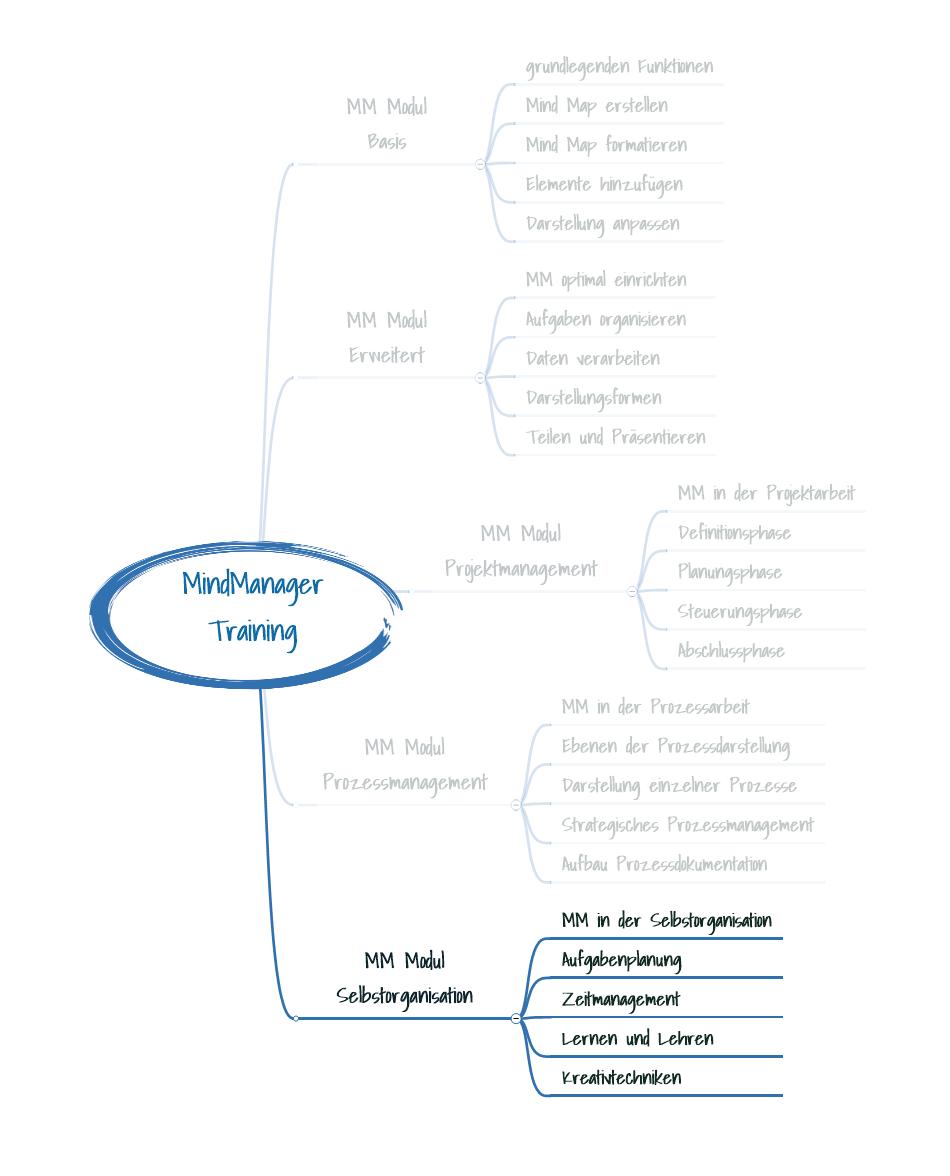 Produkt_MM_Modul_Selbstorganisation
